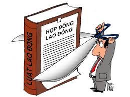 Đại học Hoa Sen: Áp dụng sai nguồn luật khi xử lý người lao động